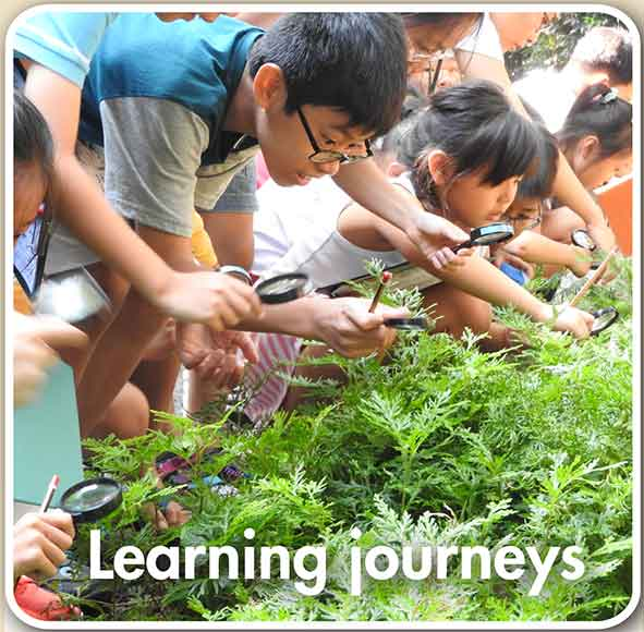 Learning journeys