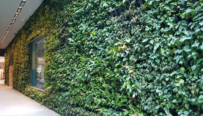 GWS Jewel Green Wall