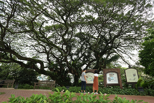 Singapore History Amidst Lush Greenery