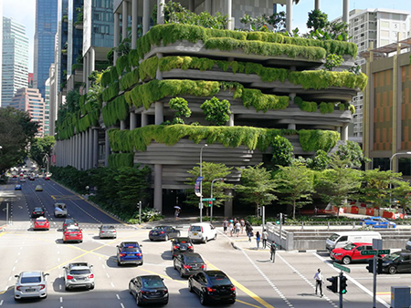 Greenery That Defies Gravity