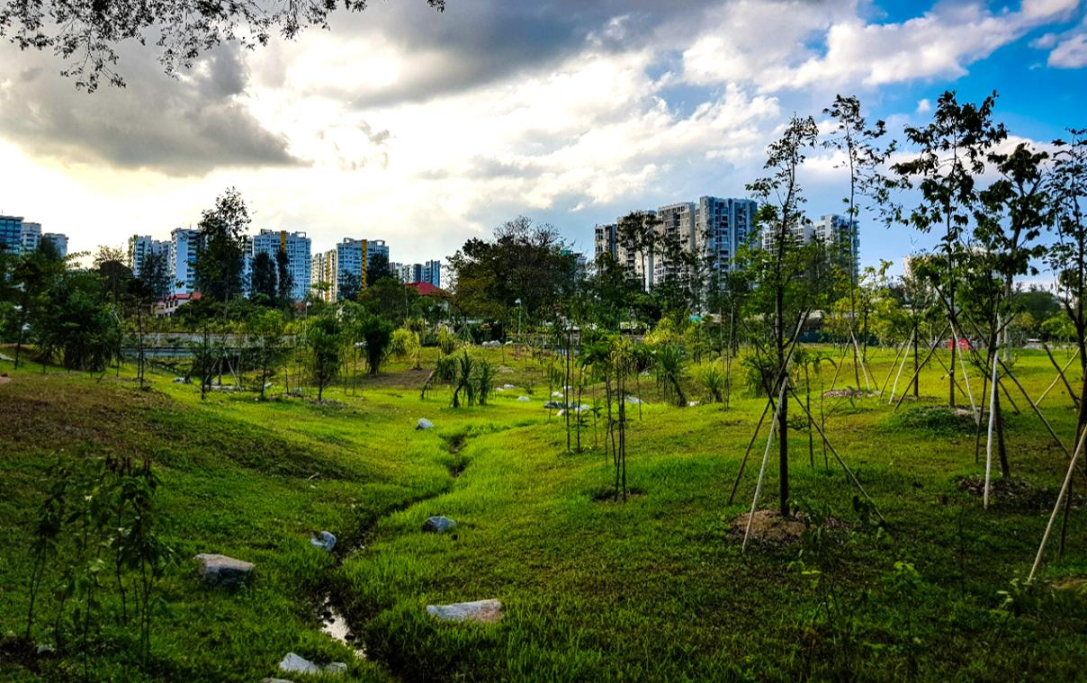 Jurong Lake Gardens - Parks & Nature Reserves - Gardens, Parks