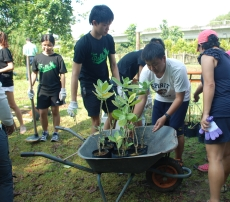Enhancing Butterfly Habitats at Tampines Eco Green