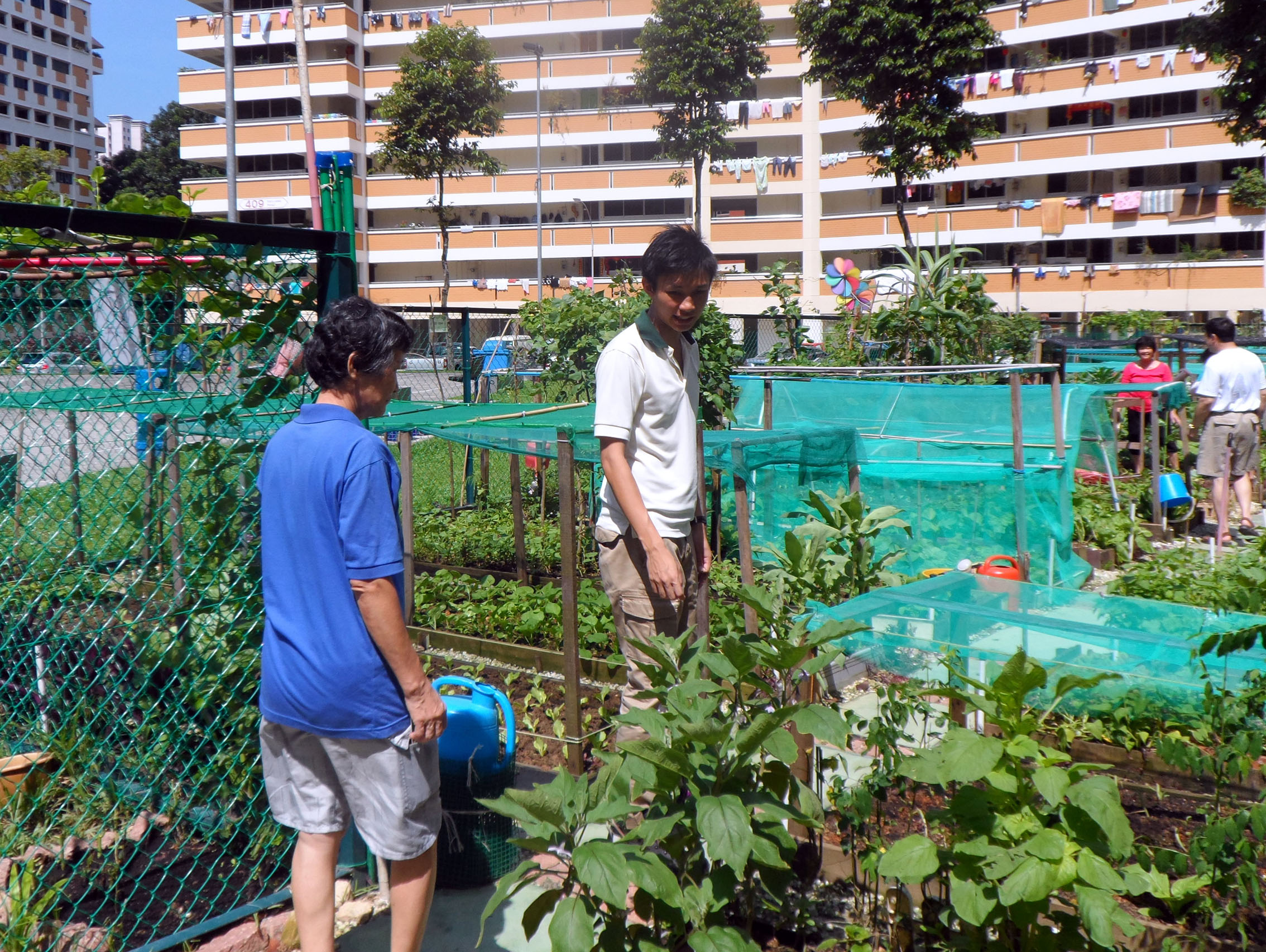 Promoting Community Gardening Is His Passion