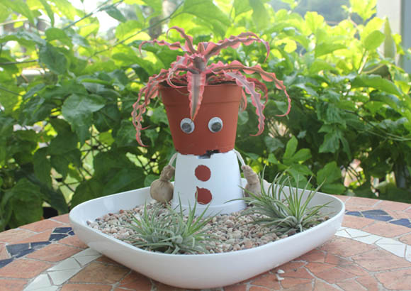 Do-It-Yourself: Miniature Pot Man
