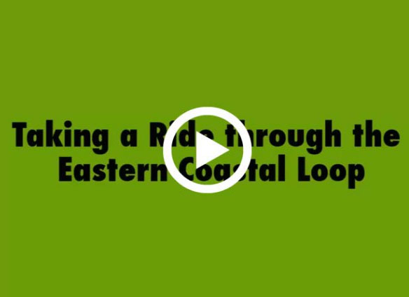 Taking A Ride Through The Eastern Coastal Loop