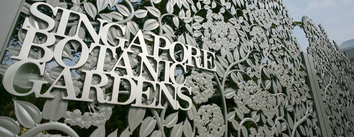 The Singapore Botanic Gardens: A Place Where Memories Are Created and Cherished