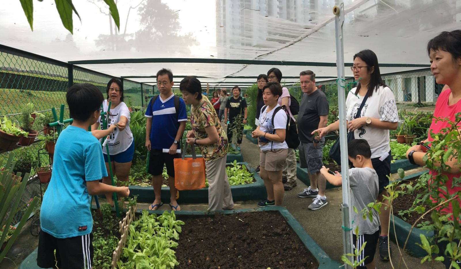 Discover the Community Gardens in your Neighbourhood