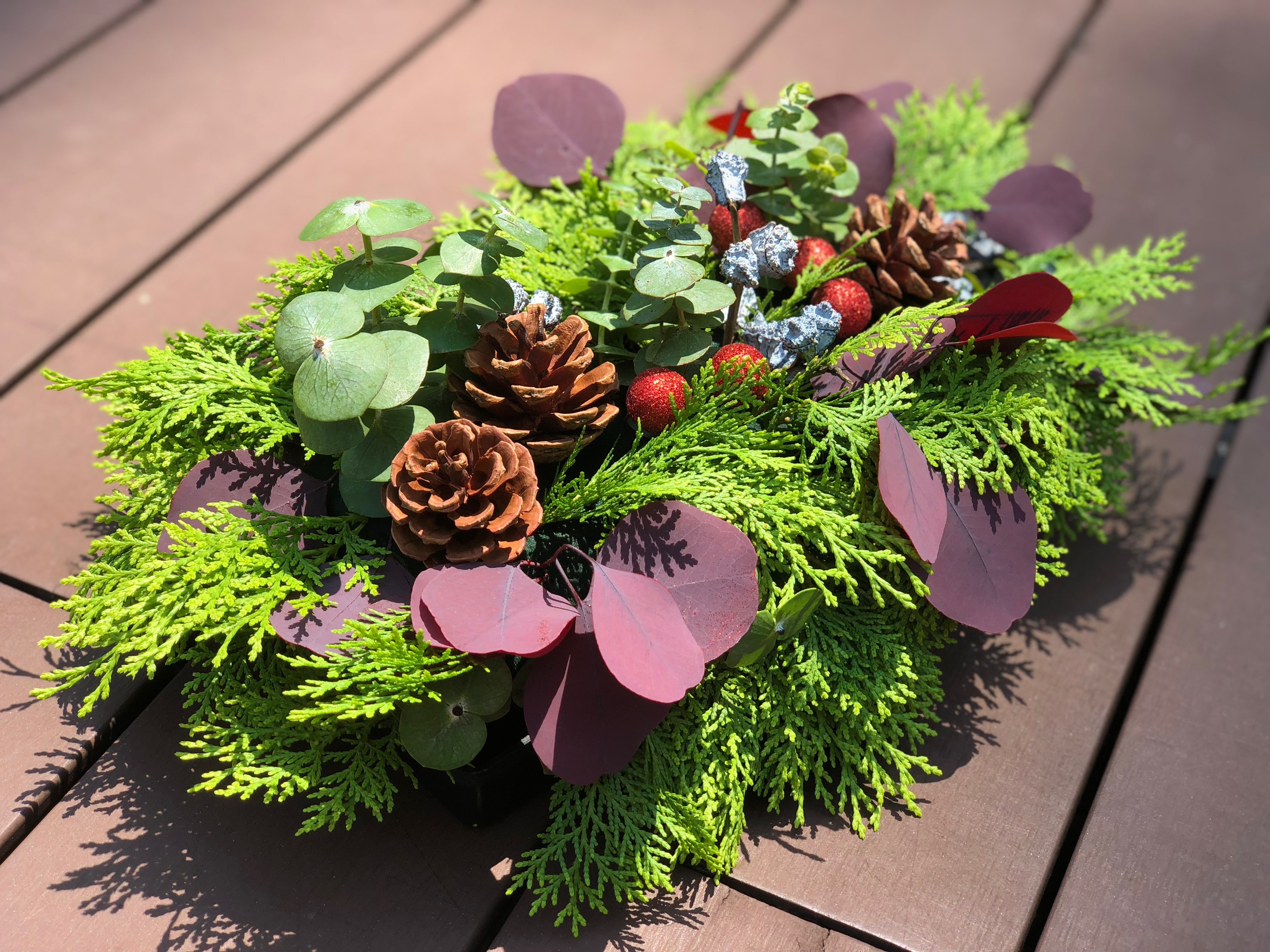 Elegant Evergreens