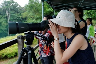 Bird Watching_Ubin 2