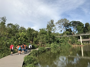 Keppel Discovery Wetlands