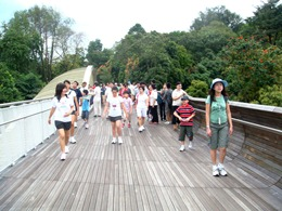 Photo of participants at the henderson waves during the Fun Walk Along Southern Ridges trail.