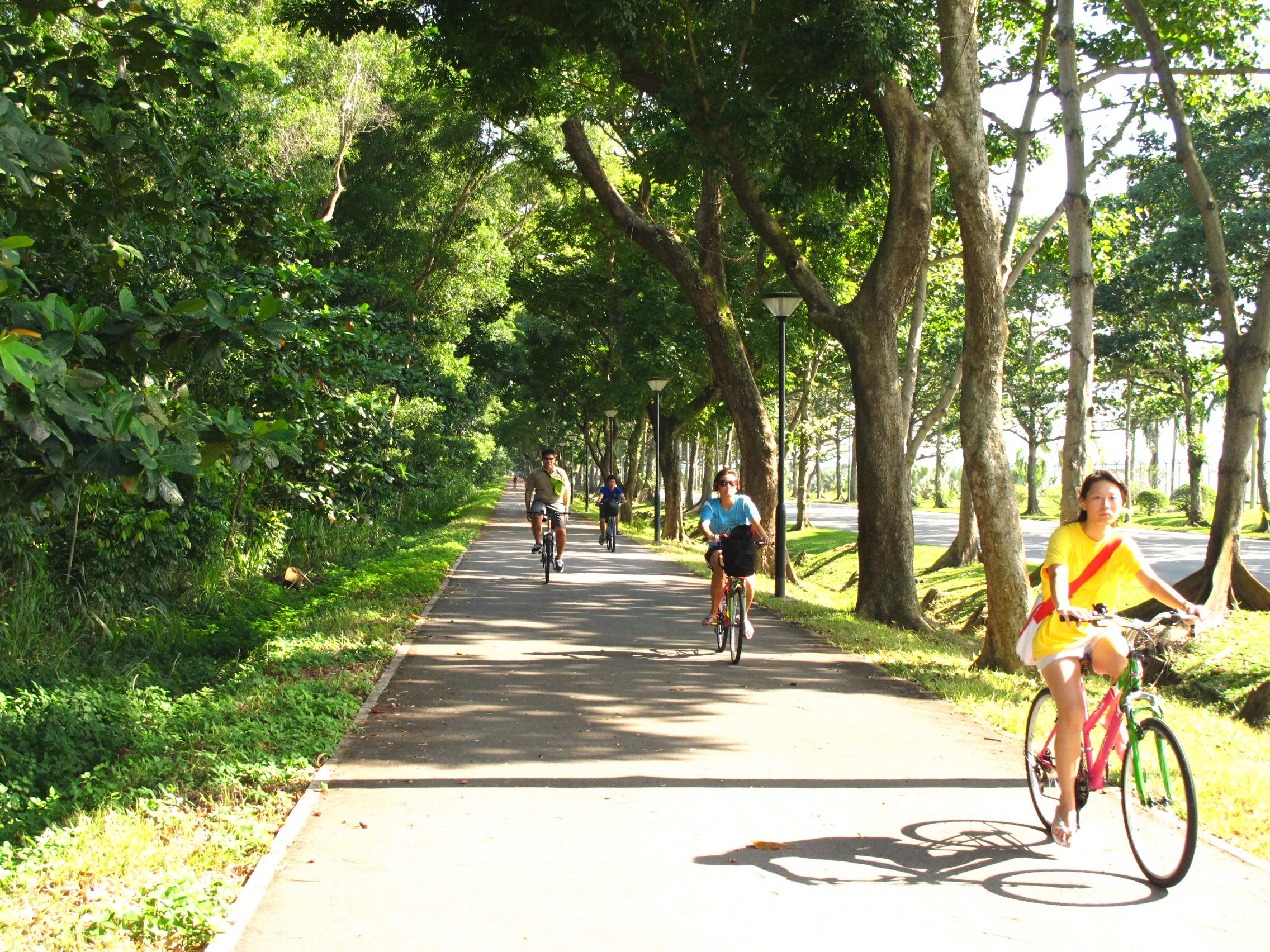Coastal Road Park Connector is one stop on the Eastern Coastal Loop.