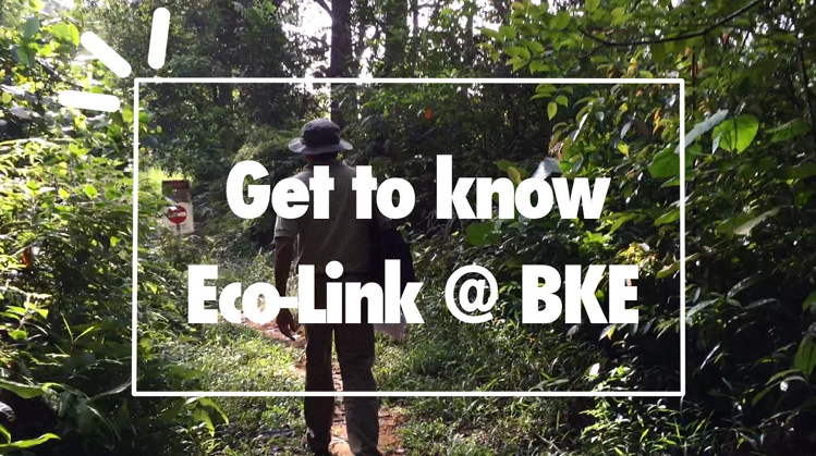 Get to know Eco-link@BKE