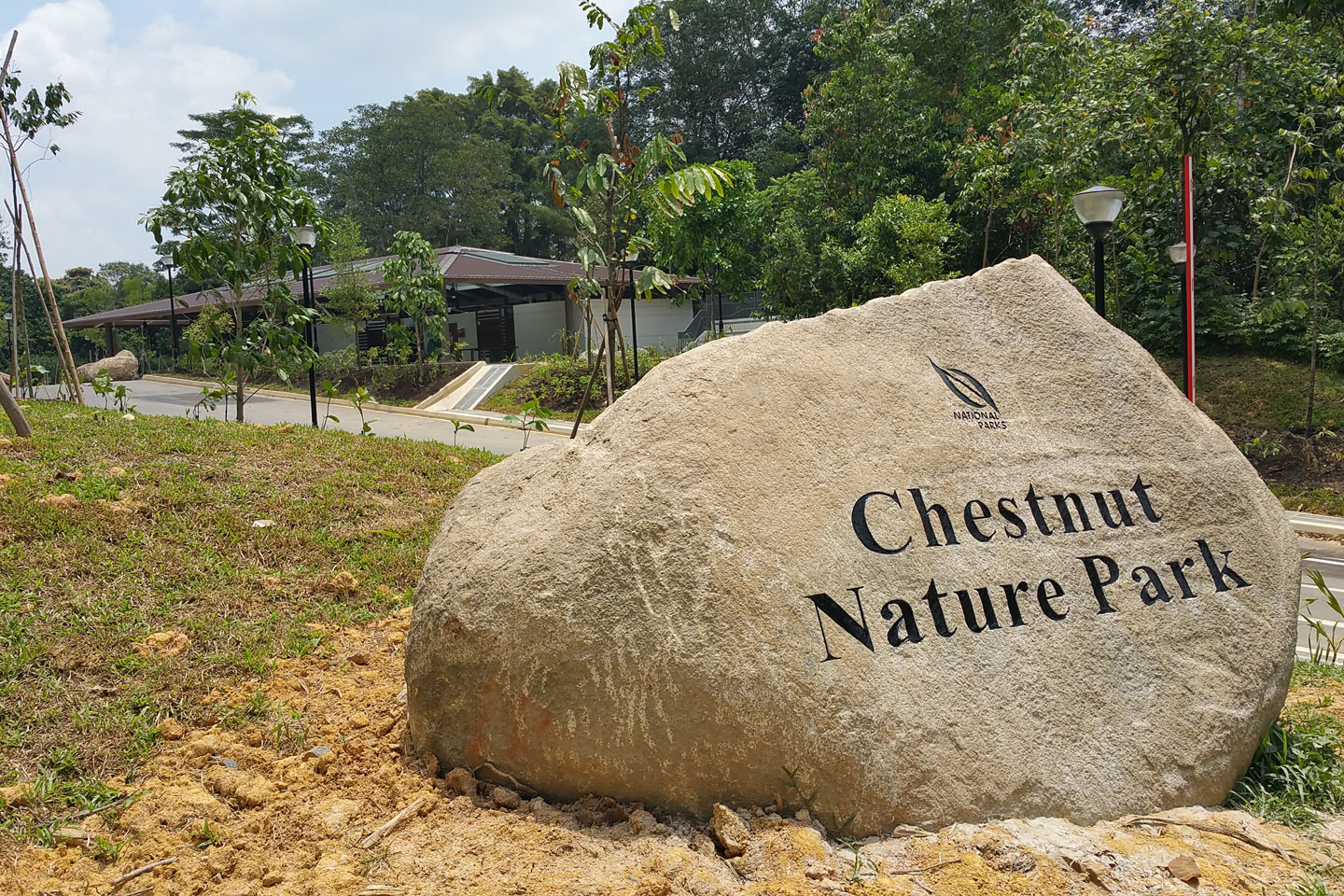 Chestnut Nature Park - Parks & Nature Reserves - Gardens, Parks & Nature -  National Parks Board (NParks)