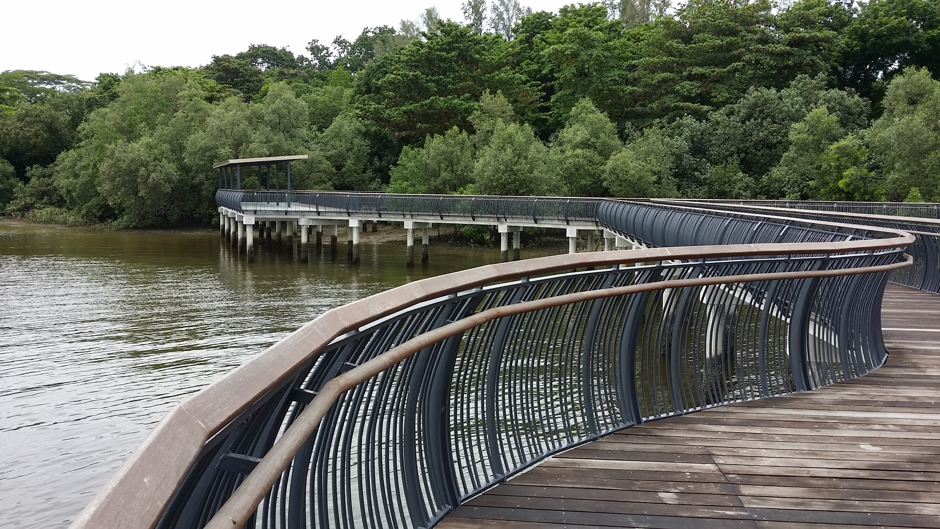 Sungei Buloh Wetland Reserve - Parks & Nature Reserves - Gardens, Parks &  Nature - National Parks Board (NParks)
