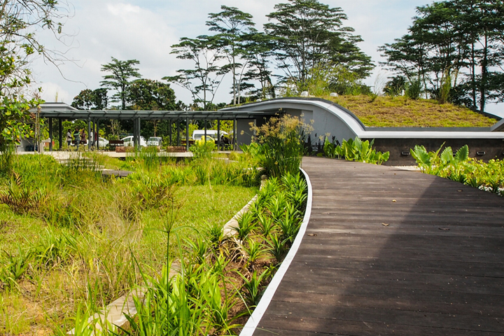 Kranji Marshes - Parks & Nature Reserves - Gardens, Parks & Nature ...