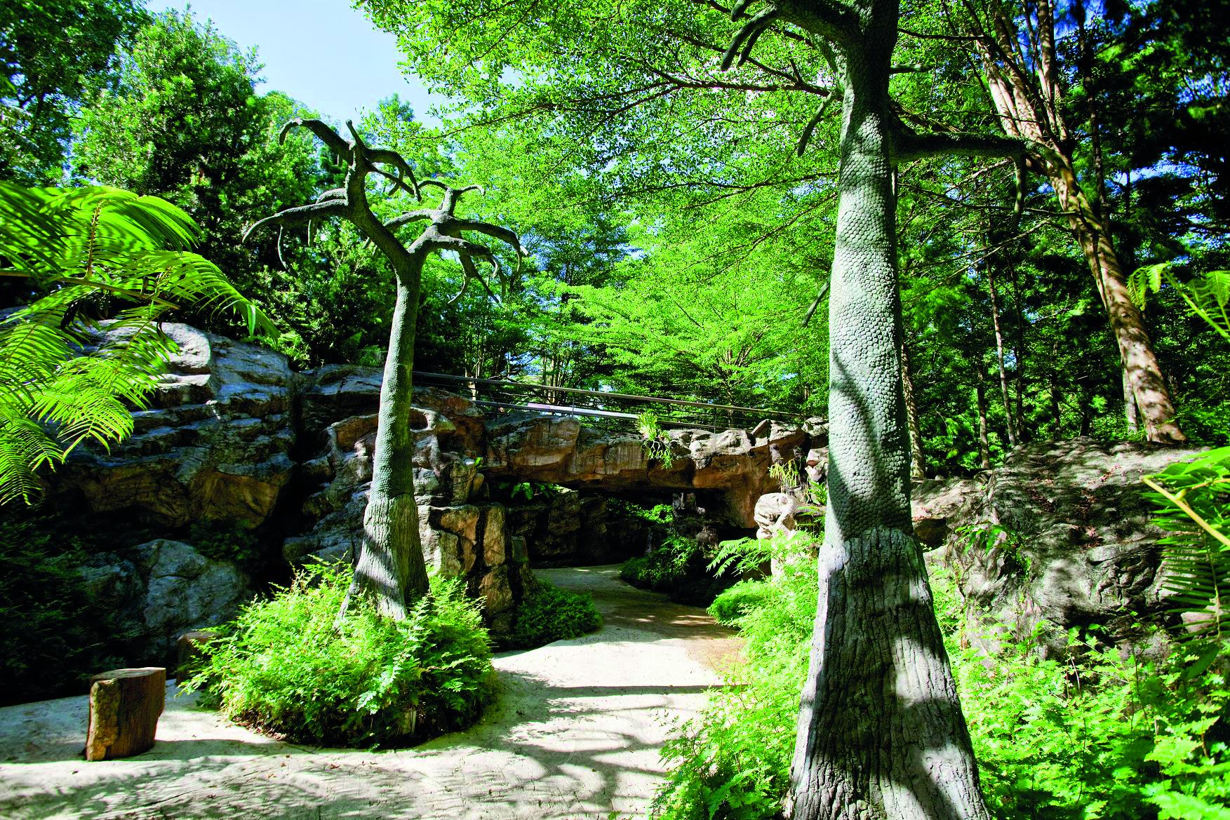Singapore Botanic Gardens - Parks & Nature Reserves ...