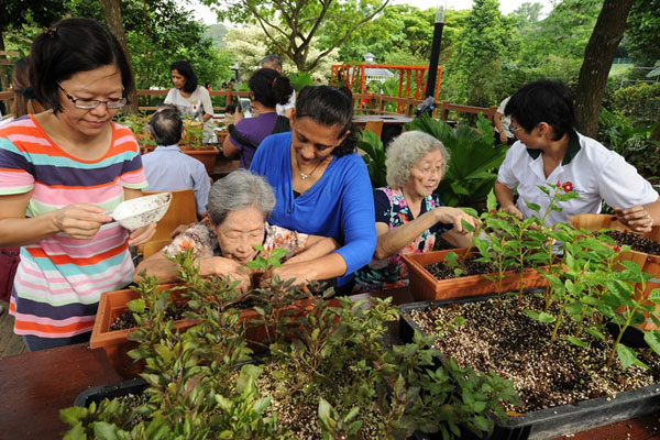 Therapeutic Horticulture Programme