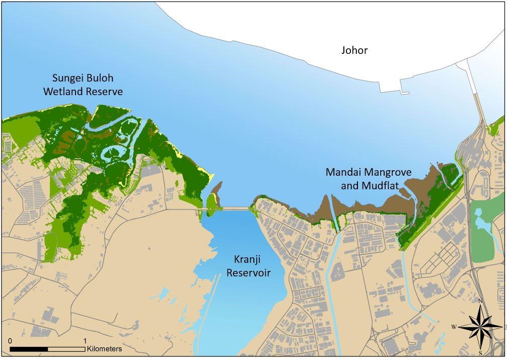 wetland-habitats.jpg