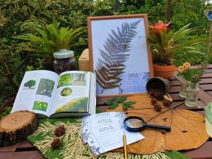 Be a budding botanist