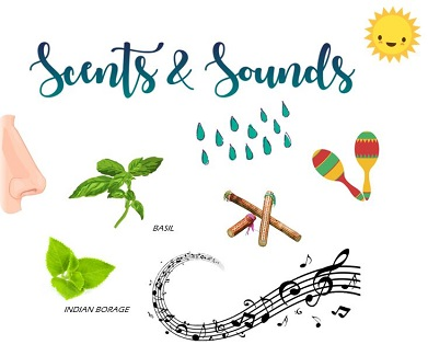 scentsnsounds