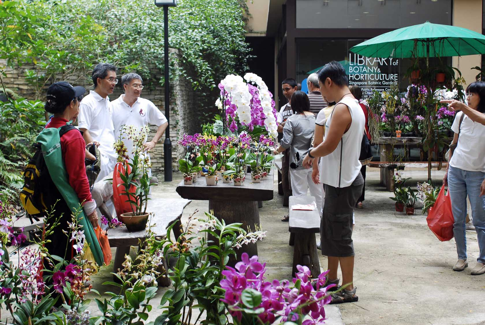 Visitors viewing plants on sale at the Courtyard of the Library of Botany & Horticulture (Tanglin Gate, Botany Centre)