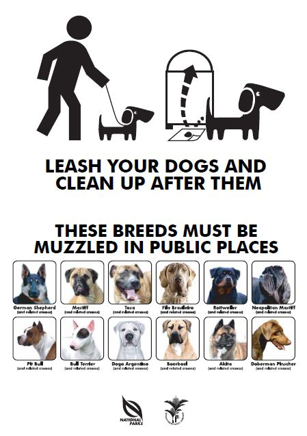 Image of poster for rules for dog owners.