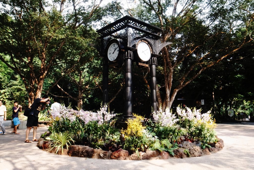 clock tower outside the national orchid garden
