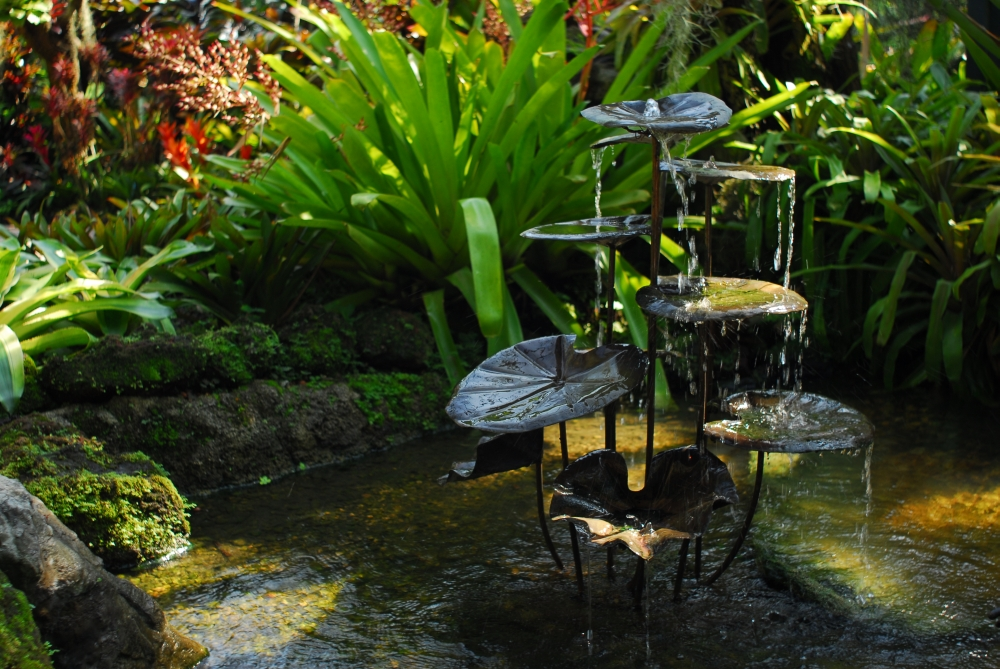 Image of Farfugium Fountain sculpture, located in the National Orchid Garden.