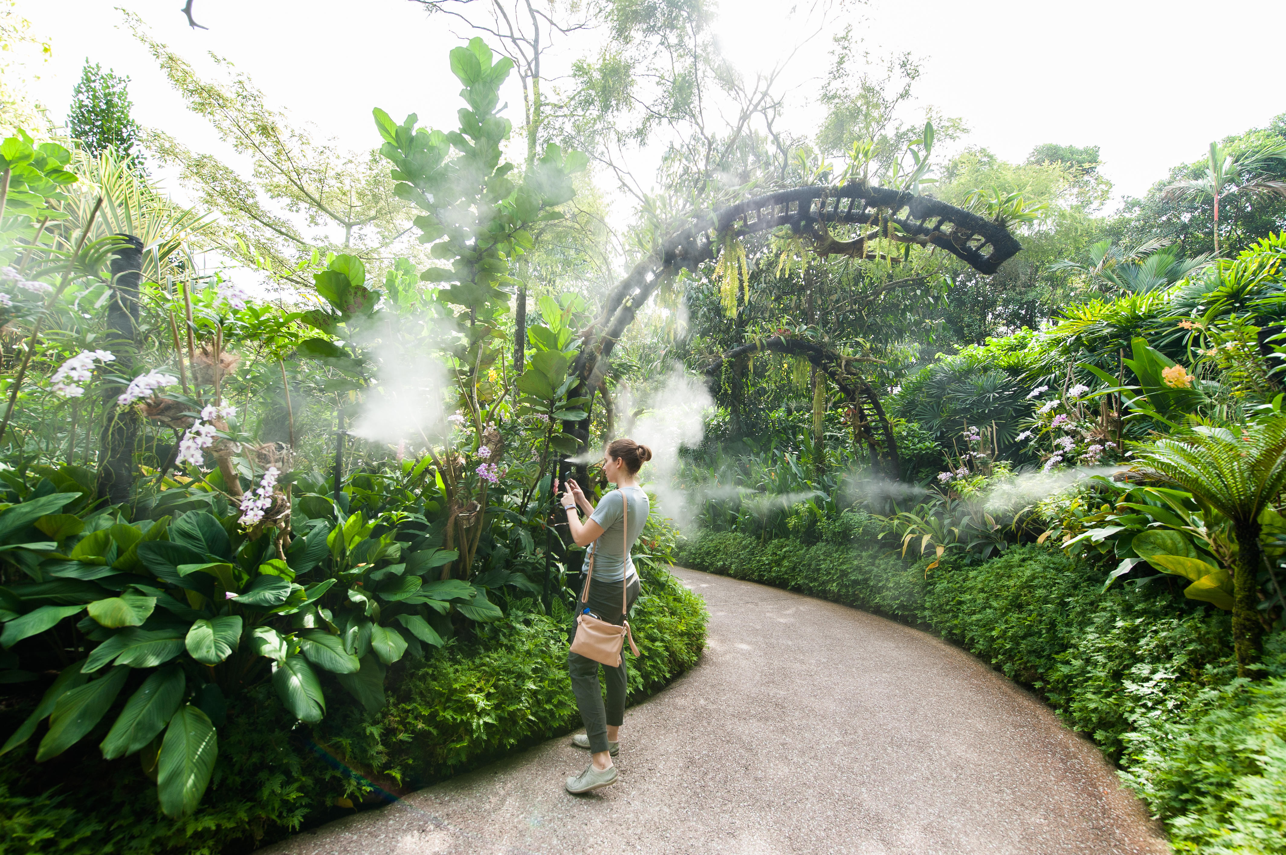 Mist Garden in the National Orchid Garden