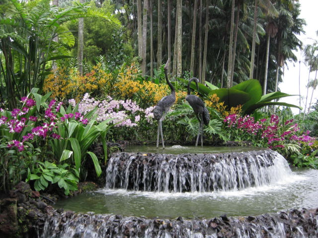national orchid garden fountain