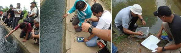 Participants conducting field sampling and analysis