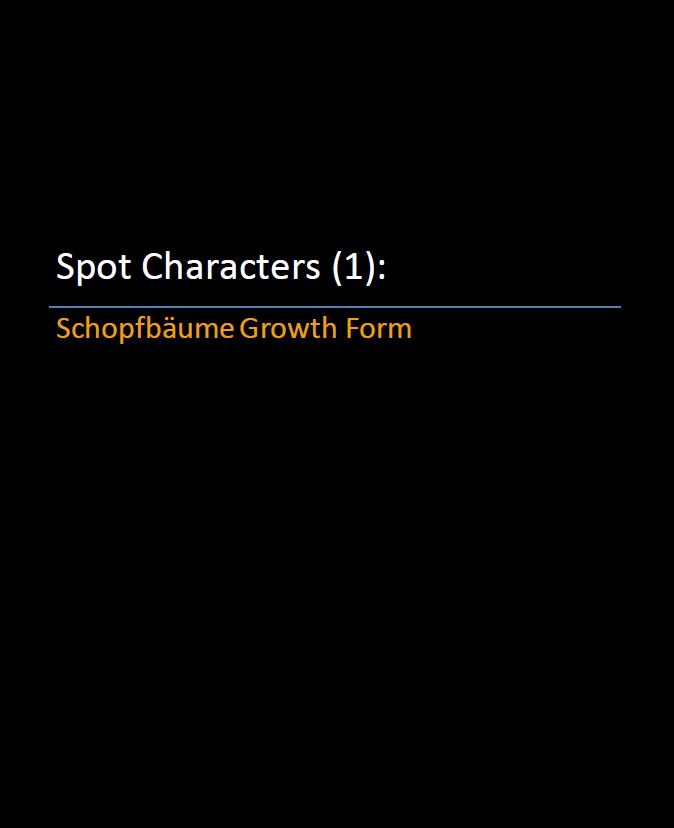 Spot Characters 1_Schopfbaume growth form Pic