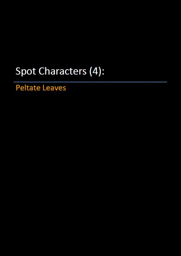 Spot Characters 4_Peltate Leaves Pic