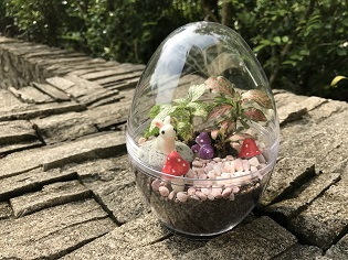 24 Mar Eggy Easter Terrarium Edit