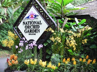 Merveilleux Singapore Botanic Gardens   Workshops U0026 Guided Walks For Organised ...