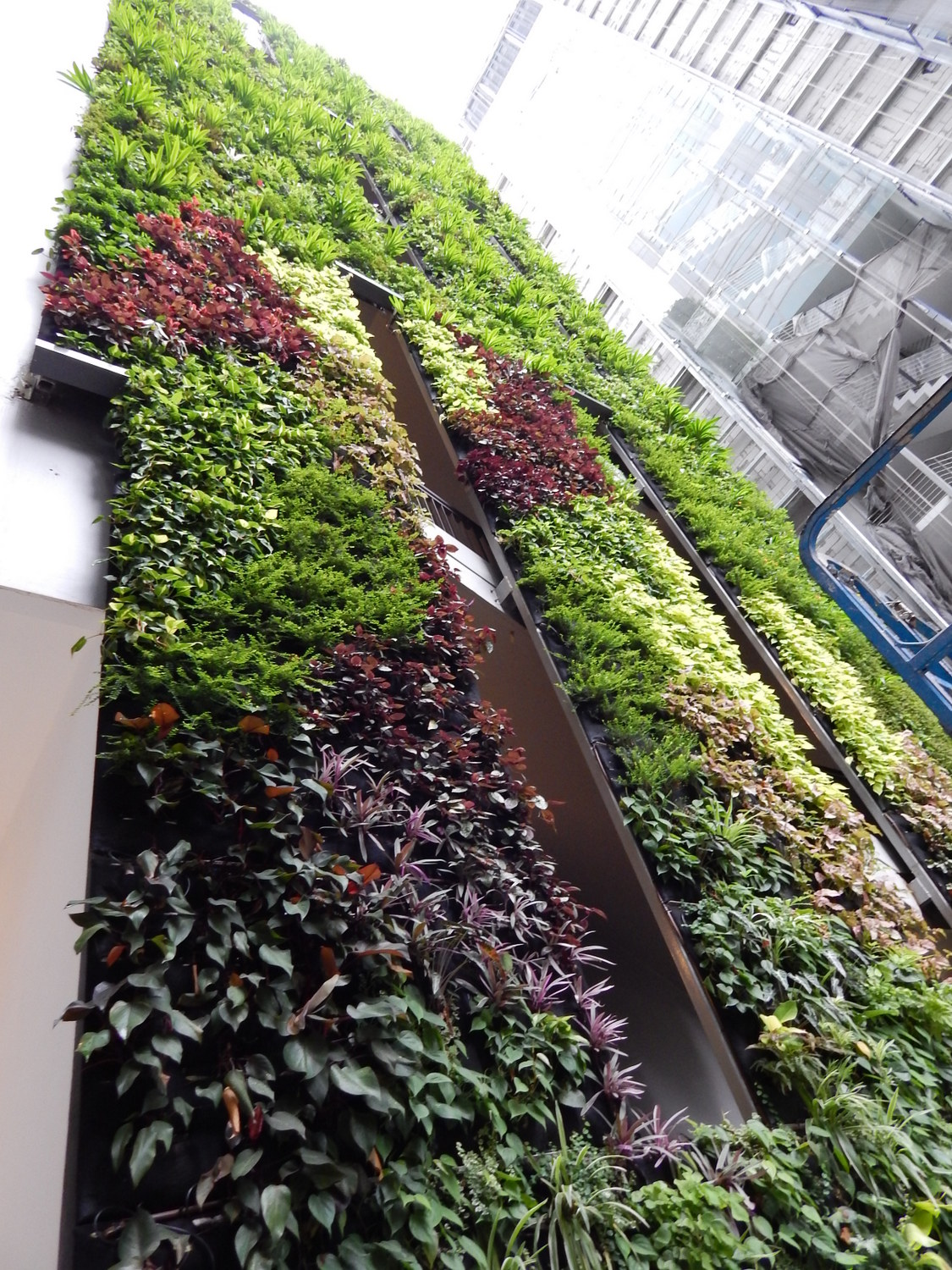 Skyrise greenery for Indoor gardening singapore